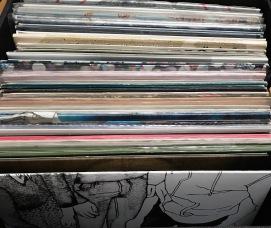 vinyl2_gam